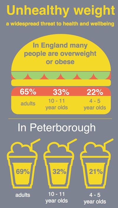 Graphic from Peterborough Public Health Annual Report 2015-16
