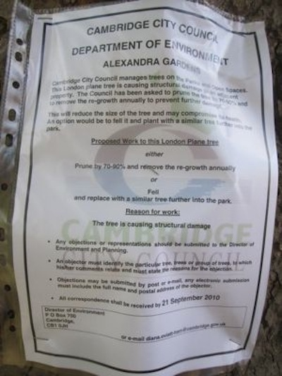 On the 3rd of September 2010 notices were attached to the trees threatened with felling.