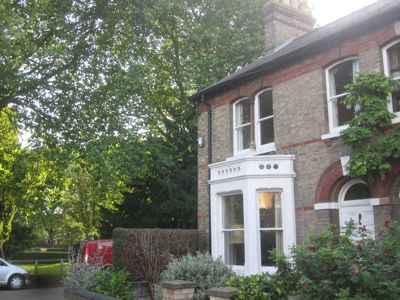 13 Holland Street is the nearest property to most of the trees threatened with felling or destructive pruning.