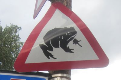 Road sign warning of toads at Burnside, Cambridge. This is rather battered sign is currently high up a pole, I believe it has been moved.