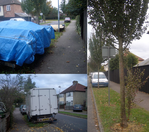 Photo Montage of Verge Parking and Ornamental Pear Trees on Garry Drive, Cambridge