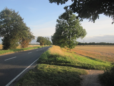 There is a proposal to buy a strip of field, to the right of the trees, for use as a cycleway.