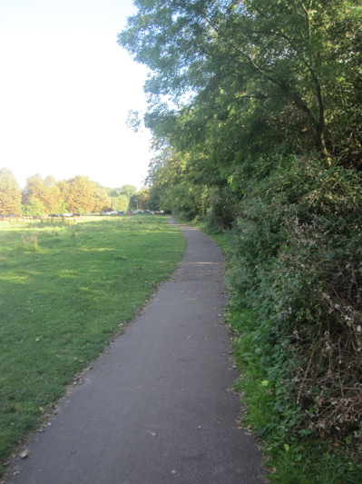 This path on New Bit in Cambridge is to be widened. I have asked if the effect of tree roots can be considered and mitigated during construction.