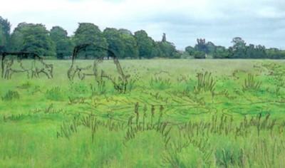 "Artists impression of muddier ""scrape"" proposed for Stourbridge Common"