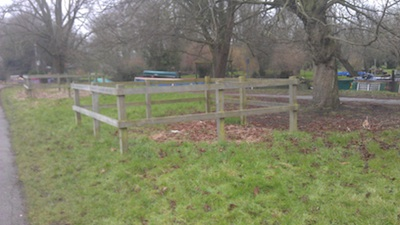 Site of Failed New Tree - Stourbridge Common